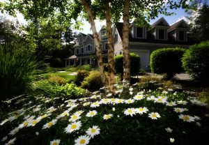 Preventing Damage to Your Roof from Summer Monsoons