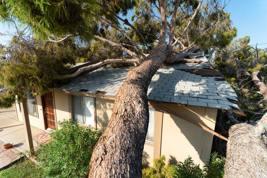 top roofing contractors in Phoenix